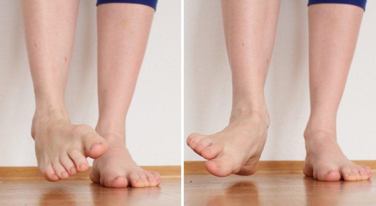 Fersensporn / Plantarfasziitis: Aktivierung Fußmuskulatur